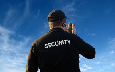 Guard Elite D&L Din Arad– Angajează Agent De Securitate